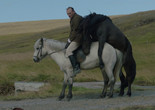 Of Horses and Men. 2013. Iceland/Germany. Directed by Benedikt Erlingsson. Courtesy Music Box Films