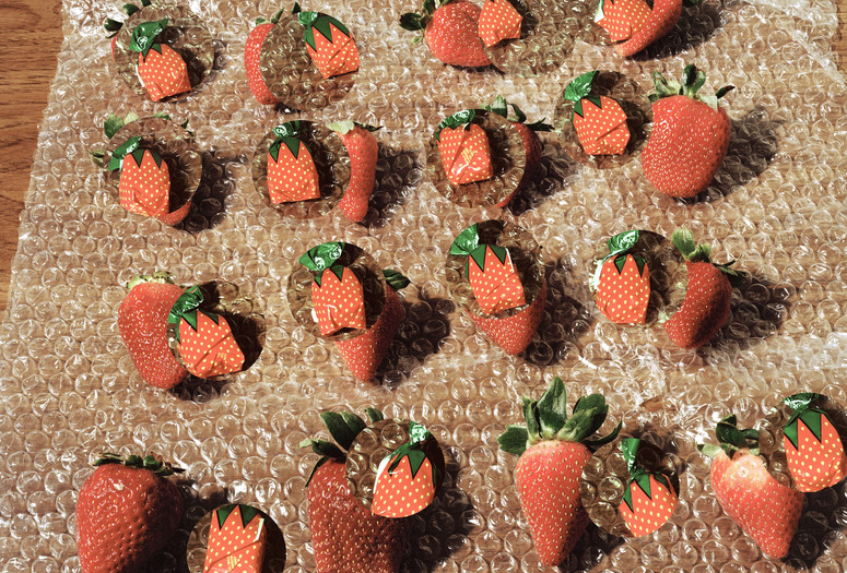 "Lucas Blalock (American, b. 1978). Strawberries (fresh forever). 2014. Pigmented inkjet print, 16 × 20"" (40.6 × 50.8 cm). Courtesy the artist and Ramiken Crucible, New York. © 2015 Lucas Blalock"