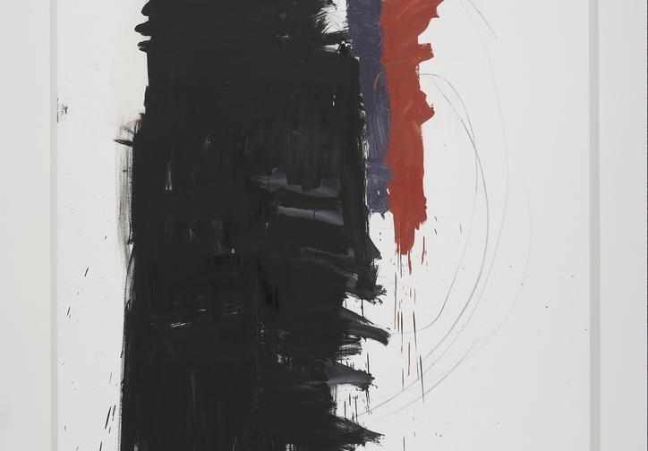 "Richard Aldrich. Angie Adams/Franz Kline. 2010–11. Oil, wax, and vine charcoal on cut linen, 7' x 58"" (213.4 x 147.3 cm). Collection David A. and Barbara L. Farley. Courtesy the artist and Bortolami Gallery, New York. Photo: Farzad Owrang"