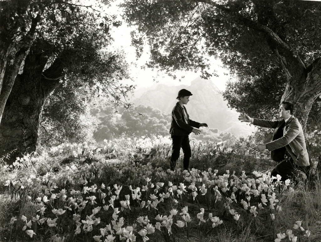 *How Green Was My Valley*. 1941. USA. Directed by John Ford