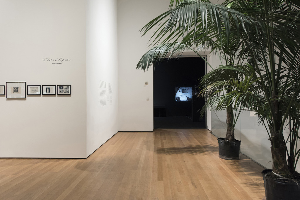 Installation view of *Marcel Broodthaers: A Retrospective*. The Museum of Modern Art, New York, February 14–May 15, 2016. © 2016 The Museum of Modern Art. Photo: Martin Seck