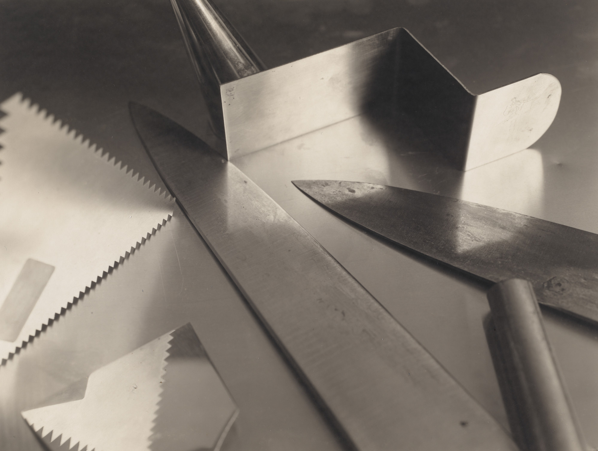 The Shape of Things: Photographs from Robert B. Menschel