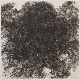 Kiki Smith. Untitled. 1990. Lithograph on handmade Japanese paper, sheet: 35 3/4 × 36″ (90.8 × 91.5 cm). Publisher and printer: Universal Limited Art Editions, West Islip, New York. Edition: 54. The Museum of Modern Art. Gift of Emily Fisher Landau