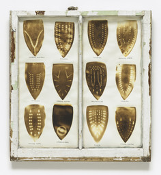 Willie Cole. *Domestic I.D. IV.* 1992. Iron scorches and pencil on paper mounted in recycled painted wooden window frame, 35 × 32 × 1 1/8″ (88.9 × 81.3 × 3.4 cm). The Museum of Modern Art, New York. Purchased with funds given by Agnes Gund