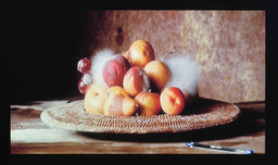 Sam Taylor-Wood. *Still Life.* 2001. 35 mm film transferred to DVD, 3 minutes, 44 seconds. Photo: Courtesy Jay Jopling/White Cube (London)