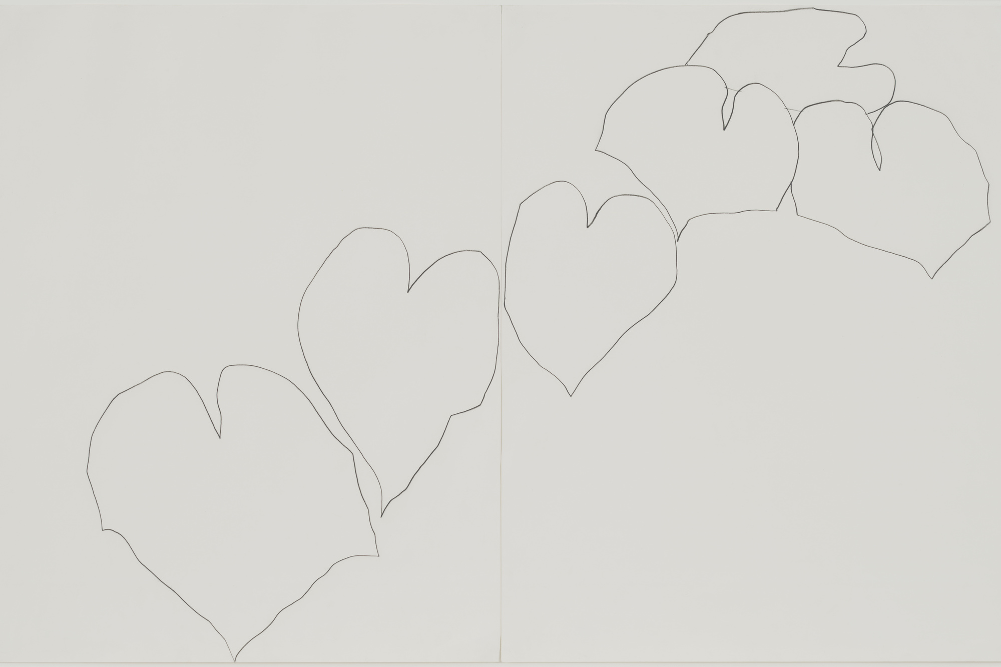 Ellsworth Kelly. Wild Grape. 1960. Pencil on two sheets of paper, overall: 28 1/2 × 25″ (72.4 × 114.3 cm). The Museum of Modern Art, New York. Gift of Kathy and Richard Fuld, Jr. in honor of Ellsworth Kelly's 80th birthday. © 2003 Ellsworth Kelly