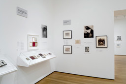 Installation view of *The Printed Picture* at The Museum of Modern Art, New York. Photo: Jonathan Muzikar