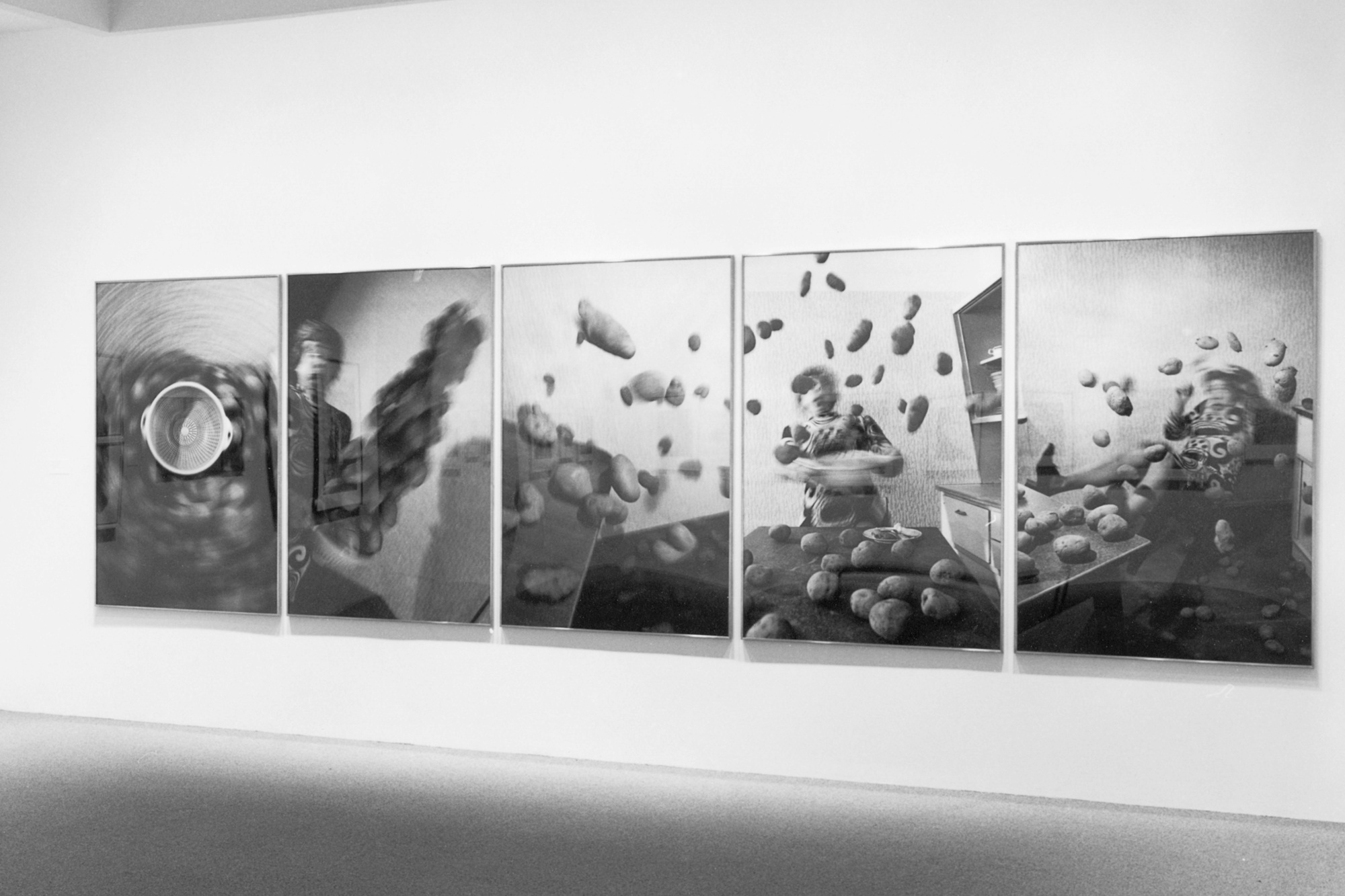 Installation view of Recent Acquisitions: Photography at The Museum of Modern Art, New York. Photo: Mali Olatunji