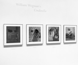 Installation view of *William Wegman's Cinderella* at The Museum of Modern Art, New York. Photo: Mali Olatunji