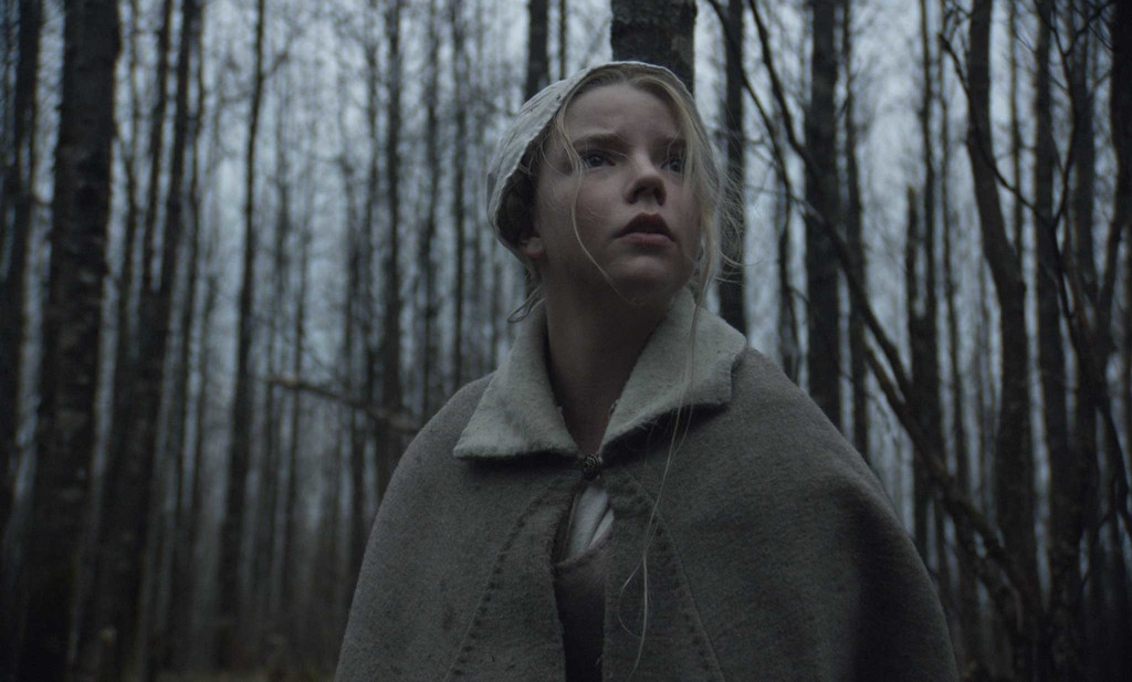 Image result for The Witch 2015 stills