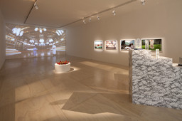 Installation view of GCC: Achievements in Retrospective at MoMA PS1, 2014. Photo: Matthew Septimus. © 2014 MoMA PS1