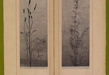 "Dried grasses and seedpods. n.d. Photogravures on Japanese paper, page 7 1⁄2"" x 2 3⁄4"" (19.1 x 7 cm). Inset in William C. Gannett. The House Beautiful (River Forest, Ill.: Auvergne Press, 1896–98). Avery Architectural & Fine Arts Library, Columbia University, New York"