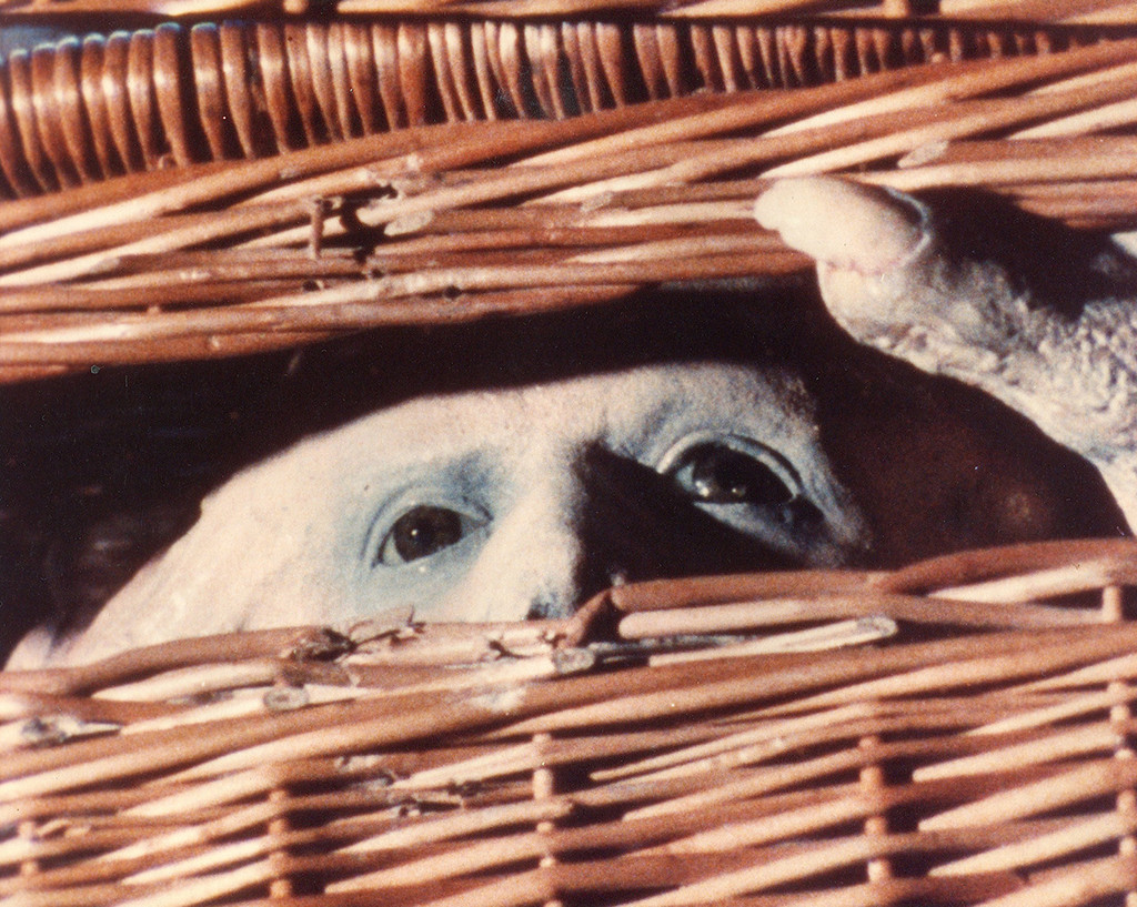 *Basket Case*. 1982. USA. Directed by Frank Henenlotter