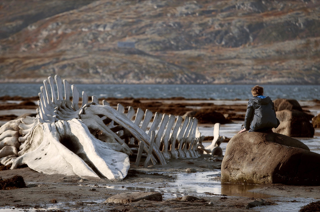 *Leviathan*. 2014. Russia. Directed by Andrey Zvyagintsev. Courtesy of Sony Pictures Classics