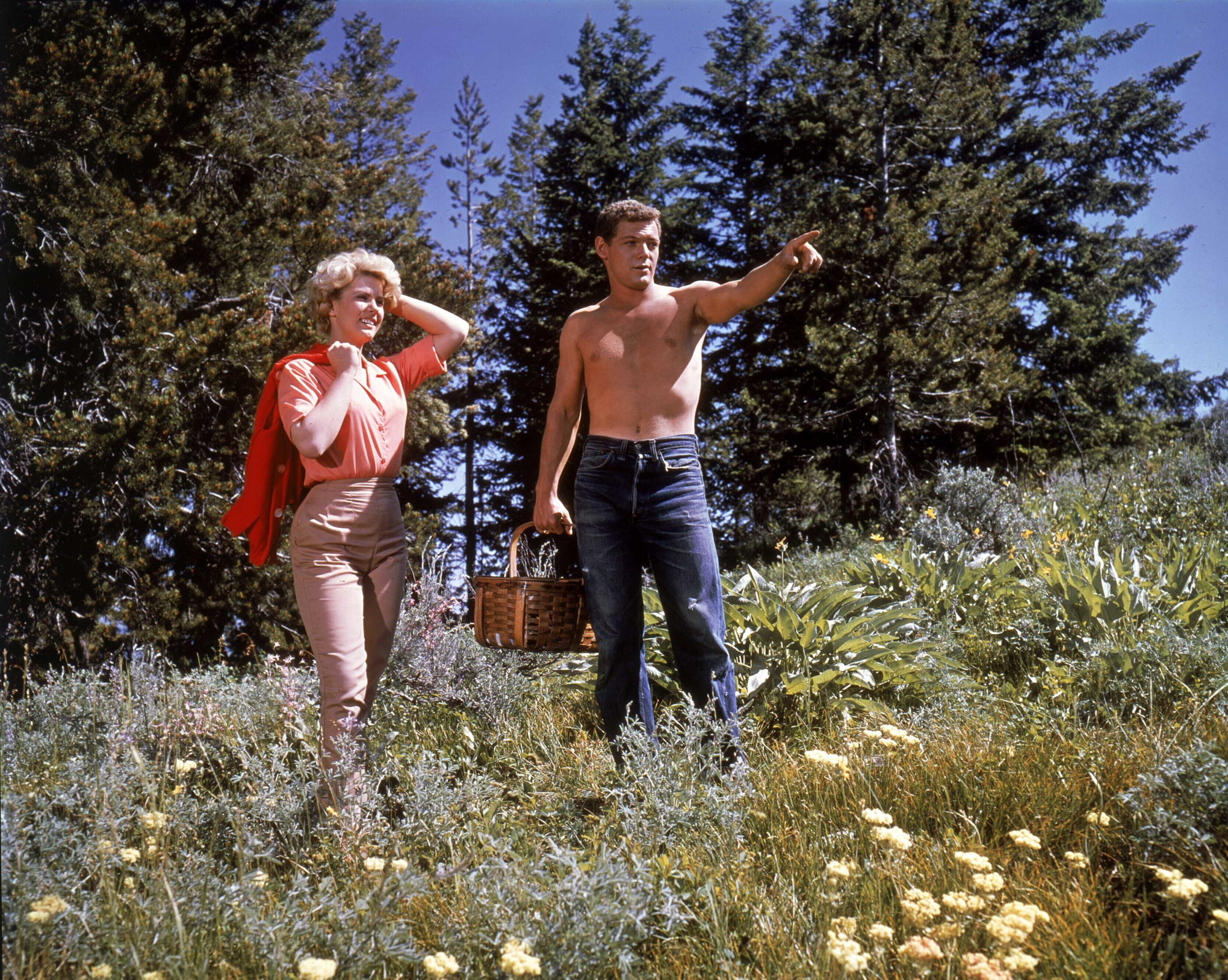 Spencer's Mountain. 1963. USA. Written and directed by Delmer Daves