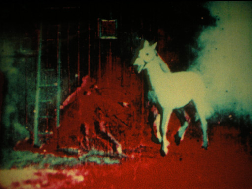 Berlin Horse. 1970. Great Britain. Directed by Malcolm le Grice. Courtesy of Malcolm LeGrice and LUX, London