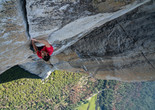 Free Solo. 2018. USA. Directed by Jimmy Chin and Elizabeth Chai Vasarhelyi. Courtesy of National Geographic Films