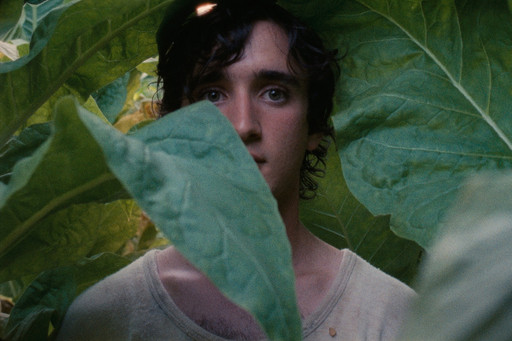 Lazzaro Felice (Happy as Lazzaro). 2018. Italy. Directed by Alice Rohrwacher. Courtesy of Netflix