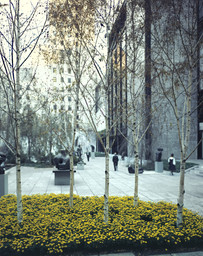 The Abby Aldrich Rockefeller Sculpture Garden, designed 1953. East terrace and east wing of The Museum of Modern Art, designed 1964. 1964. Photographic Archive. The Museum of Modern Art Archives, New York