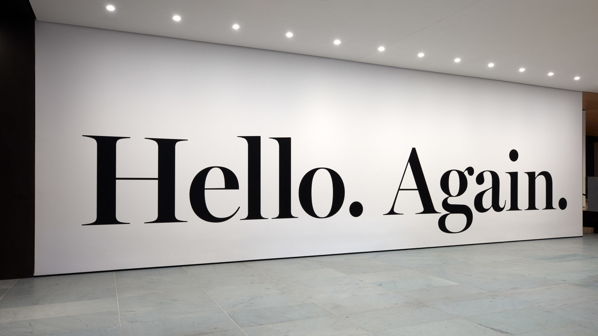 Installation view of Haim Steinbach's hello again (2013)