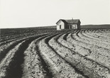 Dorothea Lange. Tractored Out, Childress County, Texas. 1938. Gelatin silver print, 9 5/16 x 12 13/16″ (23.6 x 32.6 cm). The Museum of Modern Art, New York. Purchase