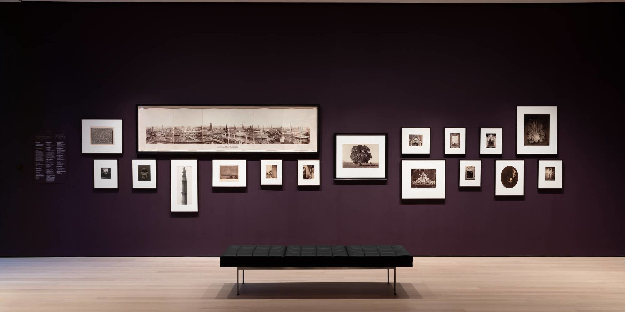 Installation view of Gallery 502: Early Photography and Film, October 2019. Photo: Jonathan Muzikar