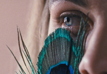 The Metamorphosis of Birds. 2020. Portugal. Directed by Catarina Vasconcelos. Courtesy Portugal Film