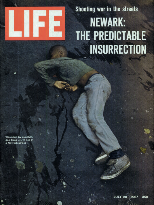 Fig. 1. Cover of Life magazine, July 28, 1967. Photo: Bud Lee