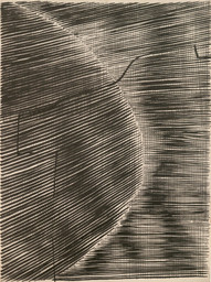 "Gego (Gertrud Goldschmidt). Untitled. 1963. Ink on paper, 30 × 22"" (76.2 × 55.9 cm). The Museum of Modern Art, New York. Committee on Drawings Funds. © 2021 Fundación Gego"