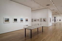 Into the Sunset: Photography's Image of the American West. Mar 29–Jun 8, 2009. 6 other works identified
