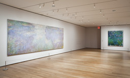 Monet's Water Lilies. Sep 13, 2009–Apr 12, 2010. 1 other work identified