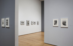 Henri Cartier-Bresson: The Modern Century. Apr 11–Jun 28, 2010. 1 other work identified
