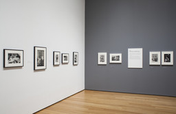 Henri Cartier-Bresson: The Modern Century. Apr 11–Jun 28, 2010. 3 other works identified