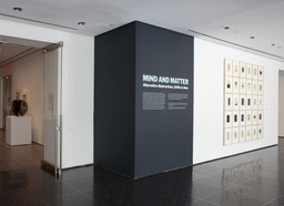 Mind and Matter: Alternative Abstractions, 1940s to Now. May 5–Aug 16, 2010.
