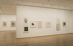 Transforming Chronologies: An Atlas of Drawings, Part One. Jan 26–Apr 24, 2006. 7 other works identified