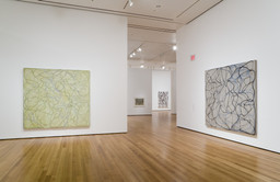 Brice Marden: A Retrospective of Paintings and Drawings. Oct 29, 2006–Jan 15, 2007.