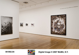 Photography Collection Rotation: Menschel Gallery. Jan 19–Apr 23, 2007. 1 other work identified