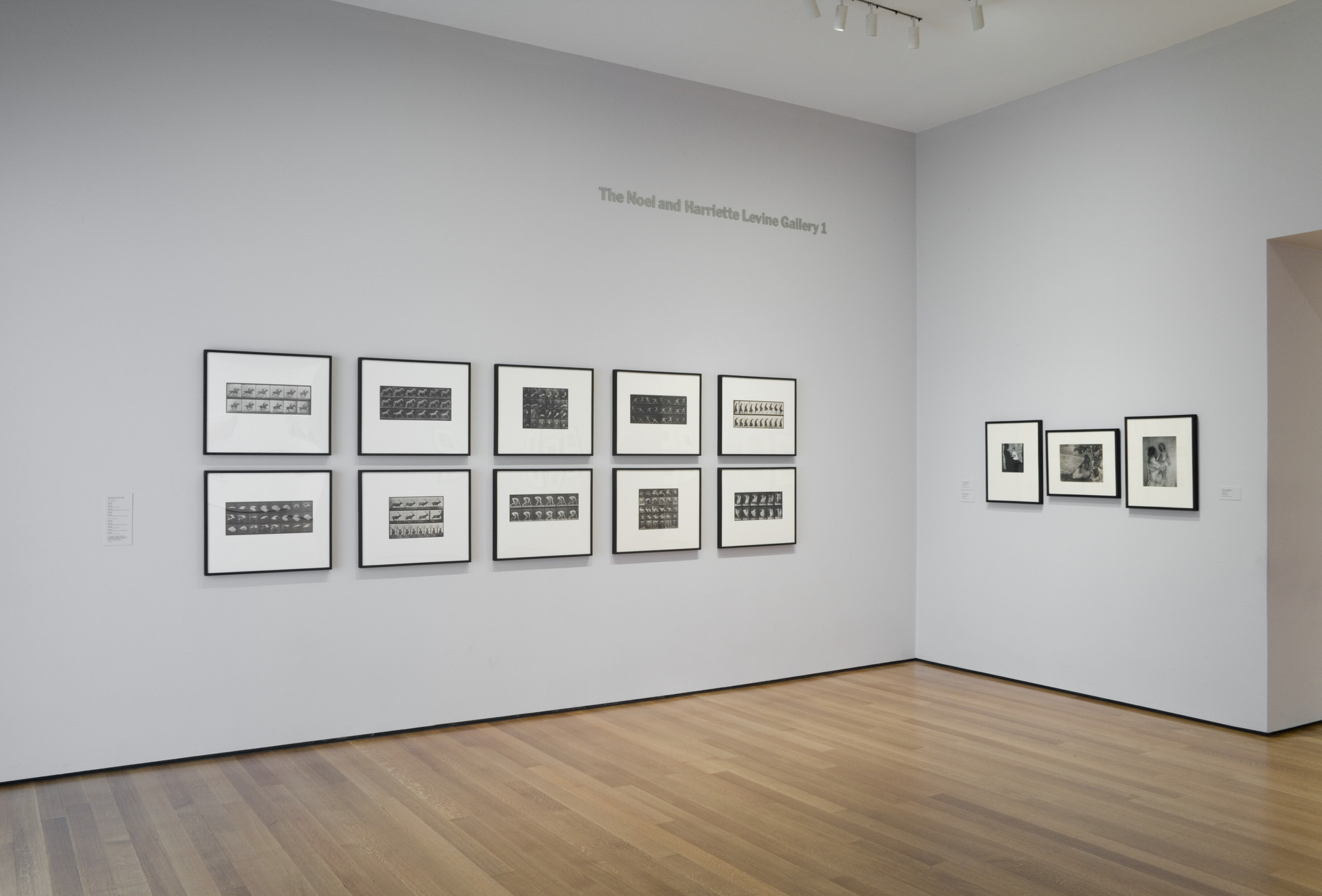 "Installation view of the exhibition, ""Edward Steichen Photography Collection Galleries: Rotation 5"" August 8, 2007–March 3, 2008. IN2014.1. Photograph by Jonathan Muzikar."