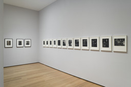 Edward Steichen Photography Collection Galleries: Rotation 5. Aug 8, 2007–Mar 3, 2008. 14 other works identified