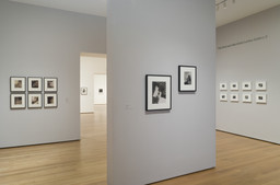 Edward Steichen Photography Collection Galleries: Rotation 5. Aug 8, 2007–Mar 3, 2008. 7 other works identified