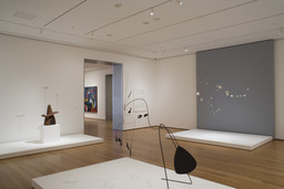 Focus: Alexander Calder. Sep 14, 2007–Apr 14, 2008. 3 other works identified