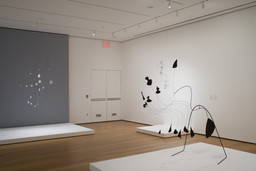 Focus: Alexander Calder. Sep 14, 2007–Apr 14, 2008. 2 other works identified