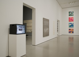 Multiplex: Directions in Art, 1970 to Now. Nov 21, 2007–Jul 21, 2008. 6 other works identified