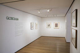 Glossolalia: Languages of Drawing. Mar 26–Jul 7, 2008. 5 other works identified