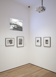 The Shaping of New Visions: Photography, Film, Photobook. Apr 16, 2012–Apr 21, 2013. 1 other work identified