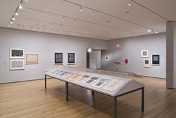 Focus: Jasper Johns. Dec 5, 2008–Feb 16, 2009. 9 other works identified