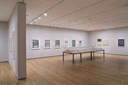 Focus: Jasper Johns. Dec 5, 2008–Feb 16, 2009. 12 other works identified