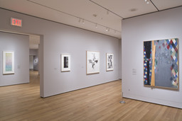 Focus: Jasper Johns. Dec 5, 2008–Feb 16, 2009. 4 other works identified