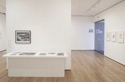Eyes Closed/Eyes Open: Recent Acquisitions in Drawings. Aug 9, 2012–Jan 25, 2013.