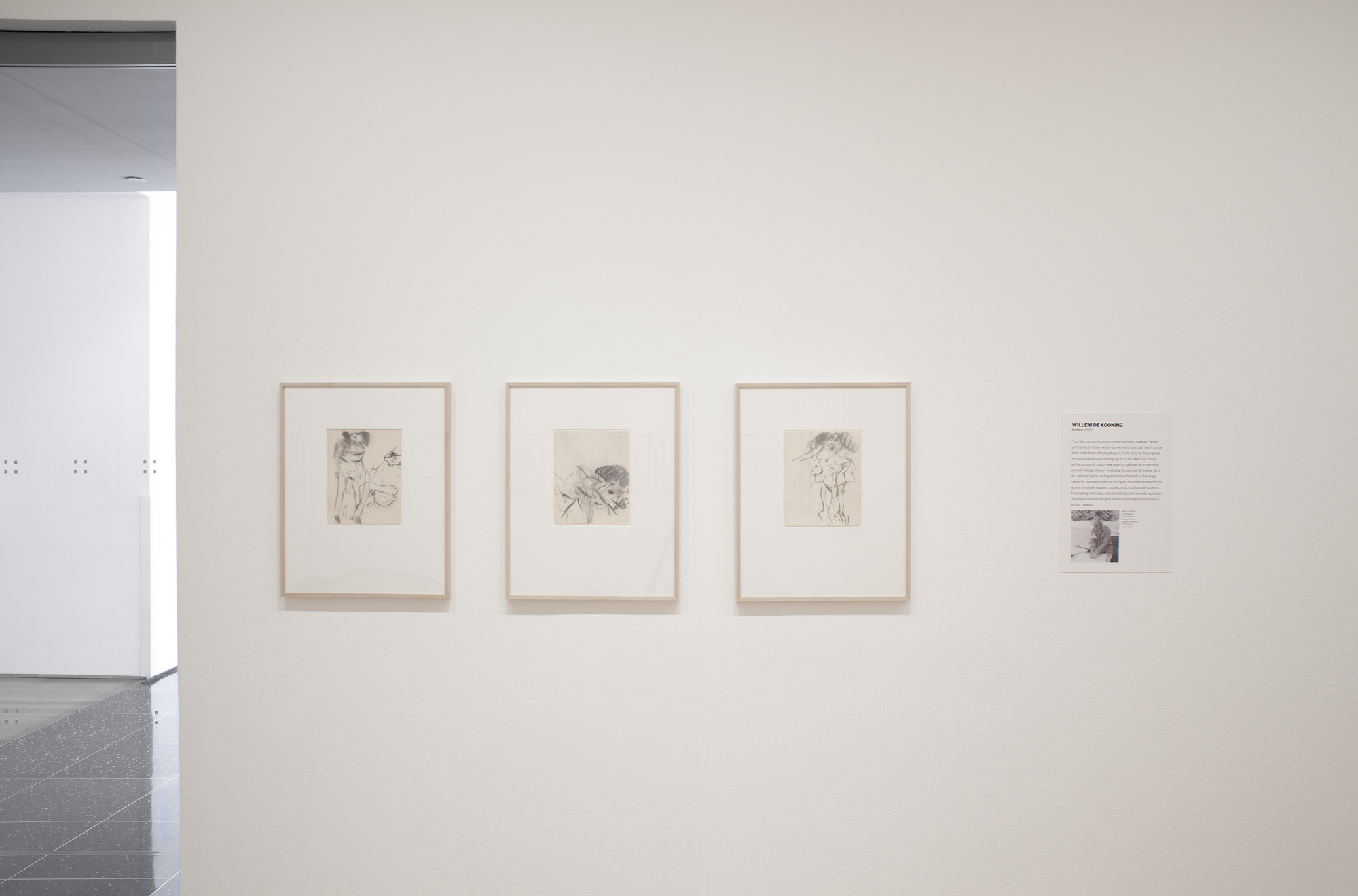 Installation view of the exhibition eyes closed eyes open recent acquisitions in drawings moma